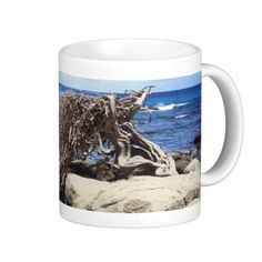 Aruba Divi Divi Tree At The Ocean    •   This design is available on t-shirts, hats, mugs, buttons, key chains and much more    •   Please check out our others designs and products at www.zazzle.com/zzl_322881145212327*