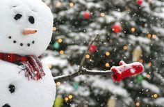 snowman: christmas time!