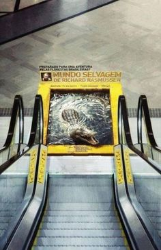 There's an Crocodile at the Bottom of the Escalator!