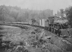 Logging train On Coos Bay Railroad - Coos Bay, Oregon
