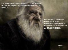 ... ¿Dogmas, adiestramiento... educación no es más que la colonización de tu mente. No necesitamos de maestros por nuestro paso por el camino... el camino es el maestro. Agus.