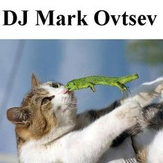 """Check out """"Dj Mark Ovtsev - Electro Mix Light N3 Emotions [Electro House, Progressive House, Vocal House, Progr"""" by DJ Mark Ovtsev on Mixcloud"""