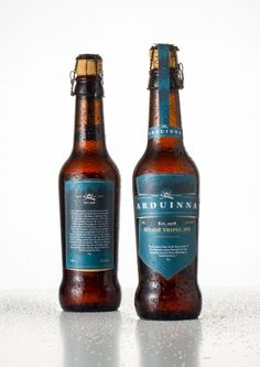 Packaging of the World: Creative Package Design Archive and Gallery: Arduinna, Triple IPA (Student Work)