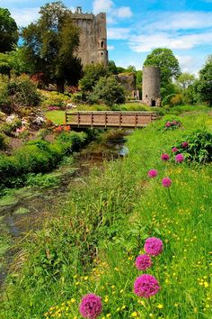 Blarney Castle, County Cork, Ireland. We spend the night nearby because of the close proximity to Shannon Airport. A nice stop before going home. Left some of Dad's ashes in Durty Nellies!