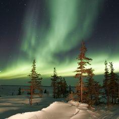 polar_lights