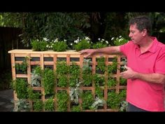 Gardeniere Jim Cunneen shows us a unique way to grow an herb and flower garden on your patio—or wherever you'd like because it is on wheels.