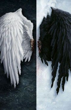 Image for Angel wings iPhone 6 wallpaper HD - Wings Wallpaper, Angel Wallpaper, Iphone 6 Wallpaper, Feather Wallpaper, Black Wallpaper, Angel Aesthetic, Ange Demon, Angel And Devil, Black Wings