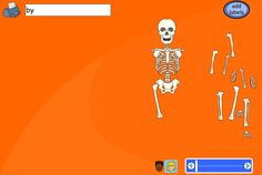 Construct the skeleton and drag the fader bar to check the bones are in the right place. Choose a boy's or girl's body using the buttons below the skeleton. Pupils can be asked to drag labels or type their own depending on ability and lesson objectives. Some pupils might like to label with the names of the bones rather than the body parts (TES iBoard)