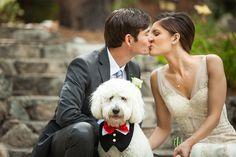 designer San Patrick, style Bagdad, in ivory, front view. Real Weddings: Julia and Tony's Lake Tahoe Nuptials