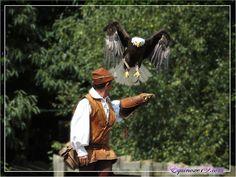 La Pygargue et son Fauconnier