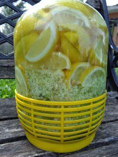 L'Angolo di Vali: Il mio sciroppo di sambuco Limoncello, Healthy Fruits, Healthy Drinks, Buttery Biscuits, Homemade Wine, Pickling Cucumbers, Health Snacks, Antipasto, Herbal Medicine