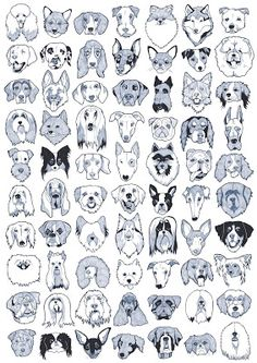 - Tap the pin for the most adorable pawtastic fur baby apparel! You'll love the dog clothes and cat clothes! ♥ - Tap the pin for the most adorable pawtas. Animal Drawings, Art Drawings, Images Vintage, Dog Illustration, Dog Tattoos, Dog Art, Doodle Art, Pet Portraits, Art Reference