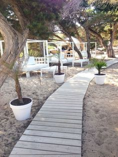 Ibiza, Cala Bassa Beach Club, Good form for start the day!