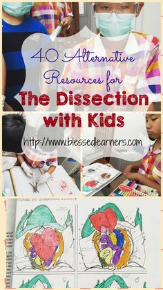 If you cannot do dissection activity with kids for some reasons, you should not be worried. Here are 40 Alternative Resources for The Dissection with Kids. You still can learn and see the internal organs of animals with these resources. Good luck!