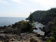 Quoddy Head State Park, Maine