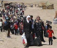 rapporto UNHCR 2015