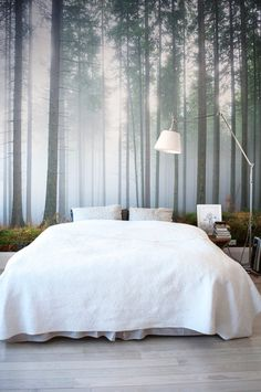 Create A Moody Ambience In Your Home With These Misty Forest Wallpapers.  Bedroom Decor WallpaperWall Murals ...