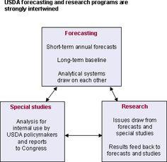 USDA Outlook Process - http://www.PaulFDavis.com food consultant, health coach for wellness body-mind-spirit (info@PaulFDavis.com).