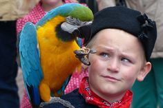 #boy #costume #parrot #urk