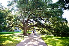 One of my ALL TIME FAV pics :) #Texas A&M engagement session #courtneymoorephotography