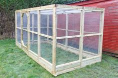 Large Chicken Run with flat mesh roof 6x9' basic size + options. Idea for chicken yard