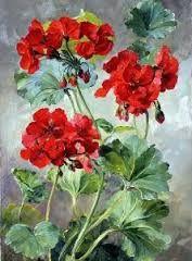 Resultado de imagem para Anne Cotterill Flower