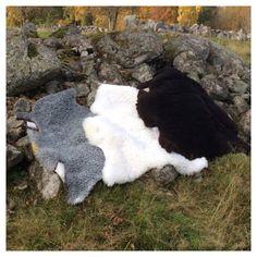 Varma goa lammskinnsfällar