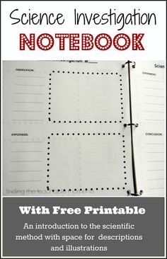Finding the Teachable Moments: Science Investigation Notebook