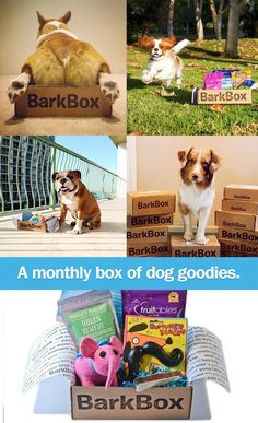 A box of high quality dog products for your pup, delivered to your door every month! - awesome animals