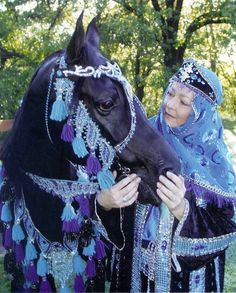 arabian horse outfit