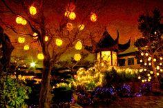 An Oriental garden
