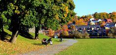 Relax at Marinen in Trondheim. The Golden Compass, Lillehammer, Trondheim, Lofoten, Norway, Colorado, Dolores Park, Relax, Student