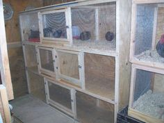 breeding and small breed pens. 2x8 Pens.I built them out of 2x2's and 3x8 inch Plywood