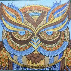#kleurboekvoorvolwassenen #markers #spectrumnoir #kleuren #kleurrijk #color #colorful #colorforadults #stift #sriften#kaartenomteversturen #lin #linda #kleurvolwassen #uil #blauw #oranje #bruin #colorage #coloradult