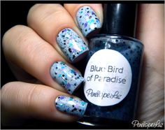 Blue Bird of Paradise - Penélope Luz