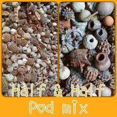 Natural Pods Half & Half mix box / Craft by TheNaturalReSourcer