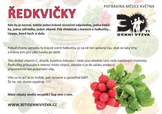 KVĚTEN - Ředkvičky - 30ti denní výzva Glycemic Index, Cantaloupe, Meal Planning, Life Is Good, Health Fitness, Food And Drink, Meals, How To Plan, Fruit