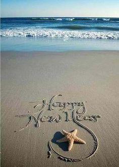florida happy new year