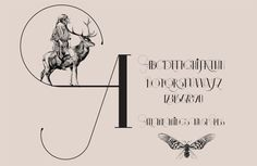 ISADORA Calligraphic Font by Daniel Barba, via Behance