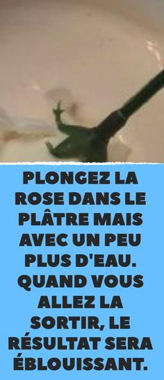 Plunge the rose into the plaster but with a little more water. Dremel, Easy Paintings, Plaster, Diy For Kids, Motifs, Shabby, Crafts, Candles, Club