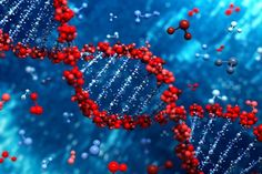 Research shows new findings on genetic regulation and protein signalling. Read more from www.cusabio.com