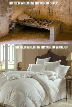 Bed when trying to sleep. Funny