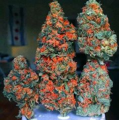 NeedForWeed.Buy Marijuana/ Buy weed /Buy cannabis and marijuana products.You have been thinking of where to get the oldest and the best marijuana strains as well as concentrates and edibles, and place your order to get in shipped within 48 hours max.No Card needed.Every transaction with us is discreet .More info at.. www.onlinecannabissupply.com Text or call +1(951) 534 5163