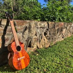 Ukulele Pictures, Mustang, Music Instruments, Guitar, Mustangs, Musical Instruments, Mustang Cars, Guitars