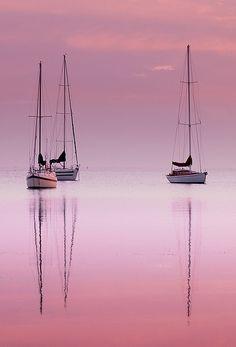 'Pink Dawn'  Corio Bay, Australia © Peter Marin