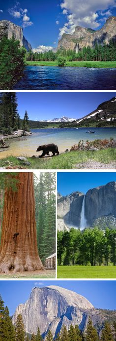 Itinerary: 21 days USA West Coast by rental car ⋆ USA rental car & round trip tips Reiseroute: 21 Tage USA Westküste mit dem Mietwagen ⋆ USA Mietwagen & Rundreise Tipps Yosemite National Park.I want to see this Beautiful place in person so BAD A - Places To See, Places To Travel, Parque Natural, Parcs, Day Tours, Travel Usa, The Great Outdoors, Wonders Of The World, State Parks