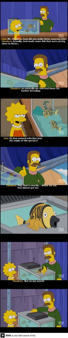 Flanders, you can't run from the truth for too long...
