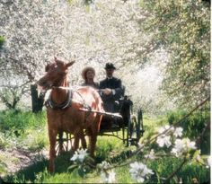 White Way of Delight| Anne of Green Gables film