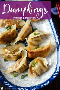 Pan fried dumplings are easier to make than you think! These crispy dumplings have a tasty chicken, mushroom and cabbage filling. Appetizer Dishes, Appetizer Recipes, Food Dishes, Dinner Recipes, Dinner Ideas, Savoury Dishes, Food Food, Pan Fried Dumplings, Chicken And Dumplings