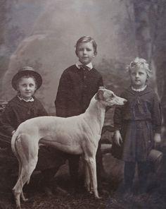 A CHARMING ORIGINAL VICTORIAN PHOTOGRAPH OF THREE CHILDREN AND A GREYHOUND DOG